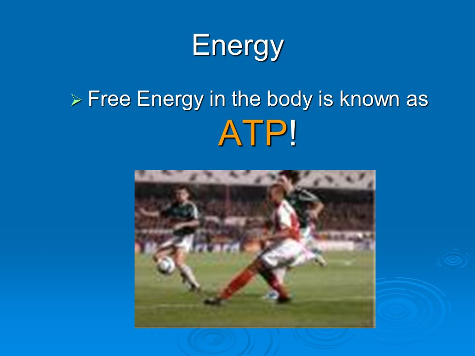 Energy  Chemical Energy is converted by the body into Free Energy Chemical Energy in Sugar Free Energy to use