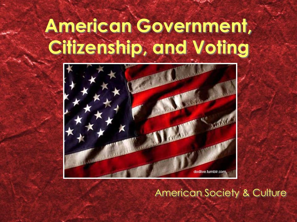 American government citizenship and voting american society 1 american government citizenship and voting american society culture dodlivetumblr voltagebd Image collections