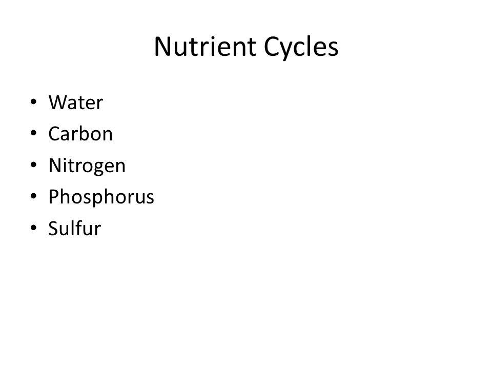Nutrient Cycles Water Carbon Nitrogen Phosphorus Sulfur