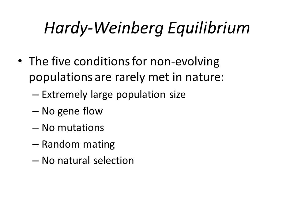 Hardy-Weinberg Equilibrium The five conditions for non-evolving populations are rarely met in nature: – Extremely large population size – No gene flow – No mutations – Random mating – No natural selection