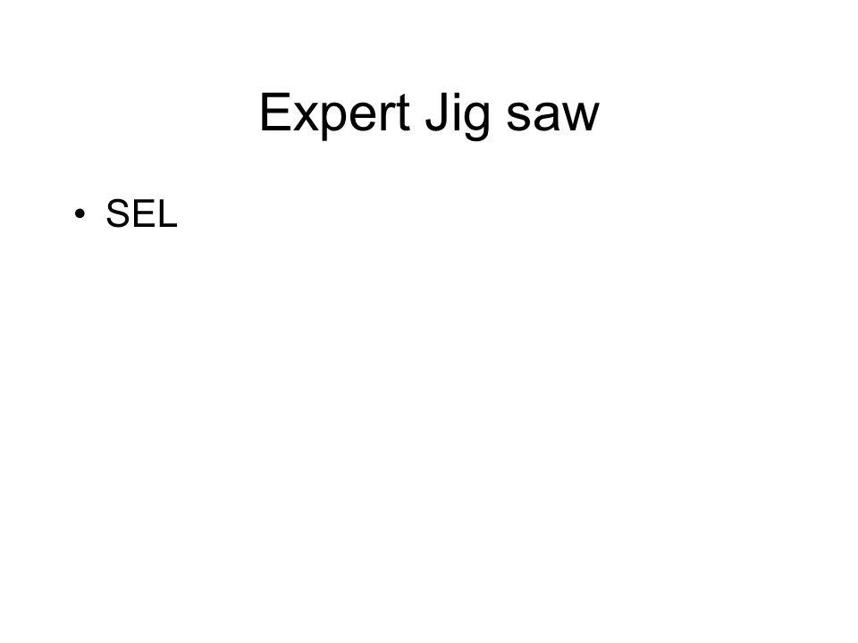 Expert Jig saw SEL