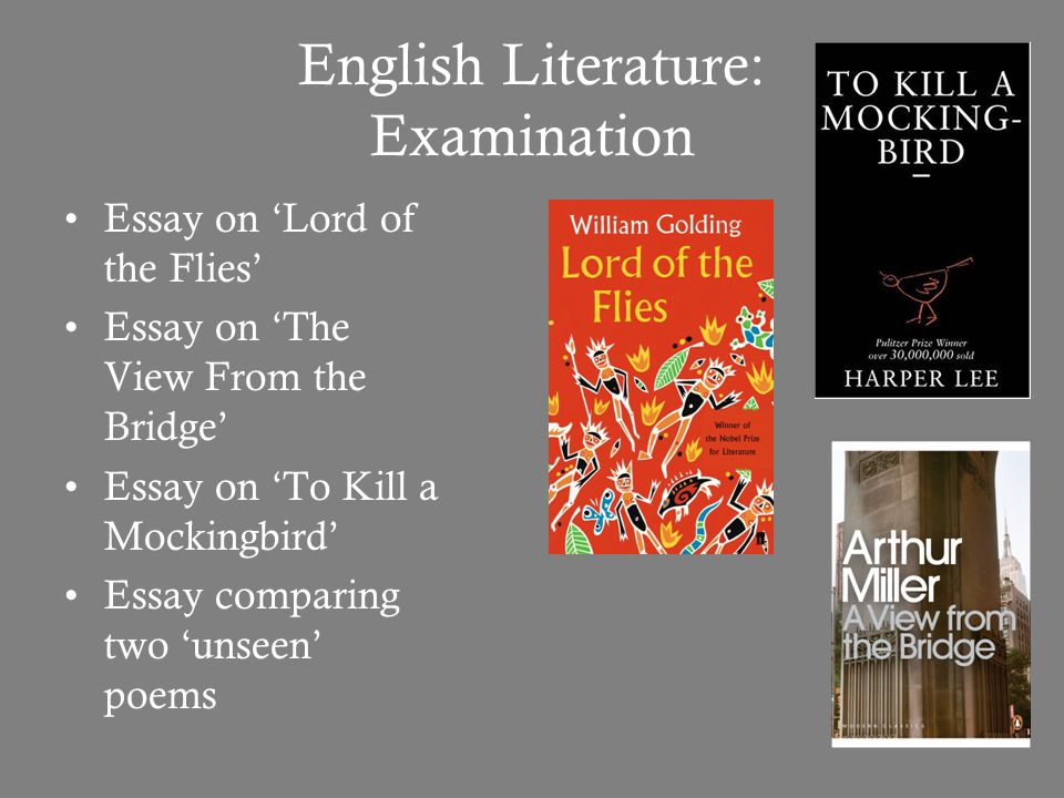 english literature essays