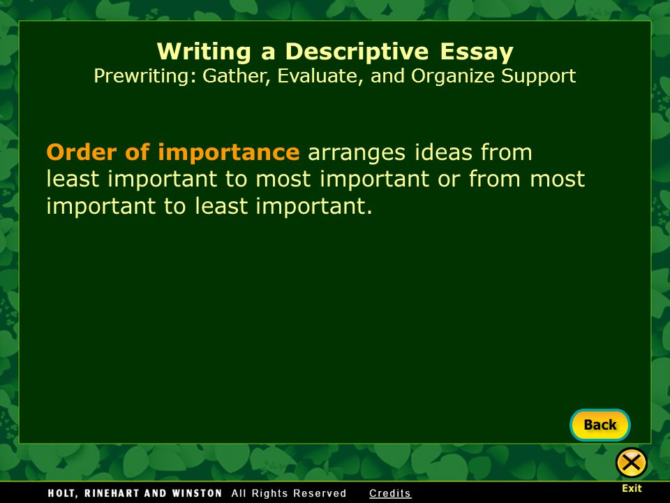 ideas descriptive essay