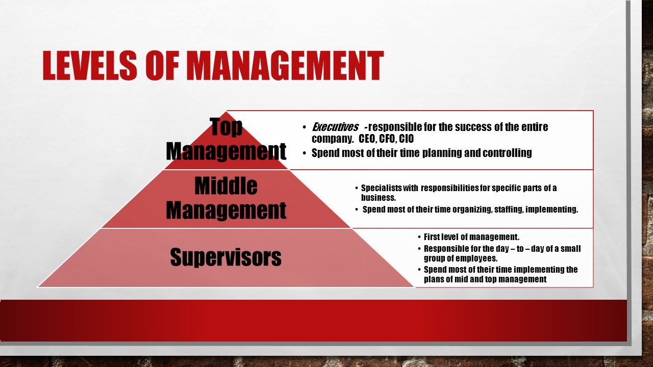 LEVELS OF MANAGEMENT Executives - responsible for the success of the entire company.