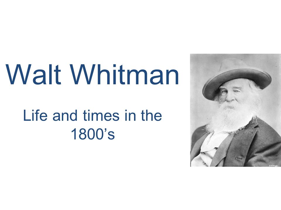 a summary on the novel live oak with moss by walt whitman Funny essay conclusion a summary on the novel live oak with moss by walt whitman meaning poetry explication essay outline videos november 28.
