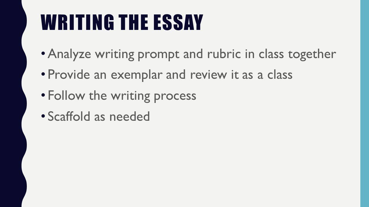 document based essay rubric