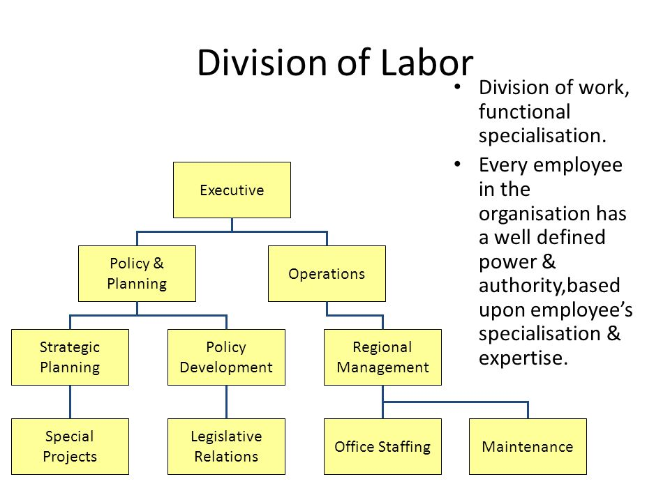 Division of Labor Division of work, functional specialisation.
