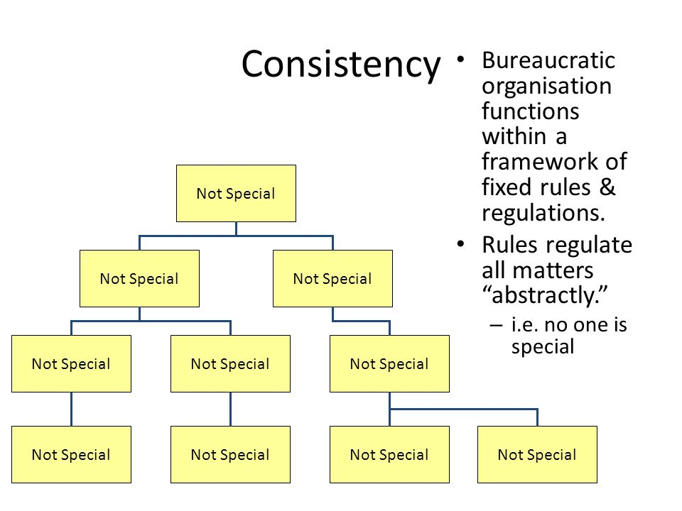 Consistency Bureaucratic organisation functions within a framework of fixed rules & regulations.