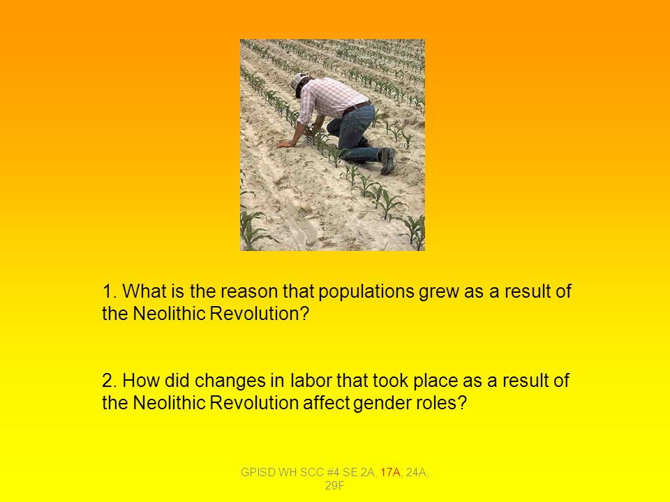"the neolithic revolution an important historical The origins of civilization a revolution in human history the ""neolithic revolution"" the two most important developments of the pre-pottery neolithic b."