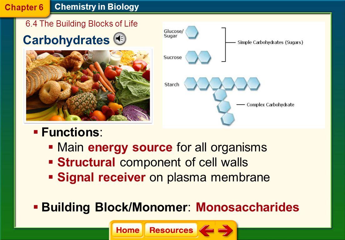 food macromolecules
