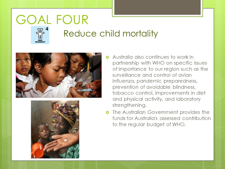 GOAL FOUR  Australia also continues to work in partnership with WHO on specific issues of importance to our region such as the surveillance and control of avian influenza, pandemic preparedness, prevention of avoidable blindness, tobacco control, improvements in diet and physical activity, and laboratory strengthening.