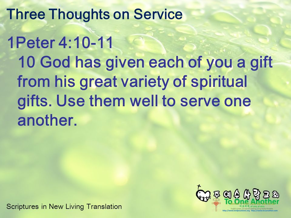Scriptures in new living translation three thoughts on service scriptures in new living translation three thoughts on service 1peter 410 11 10 god has given each of you a gift from his great variety of spiritual gifts negle Images
