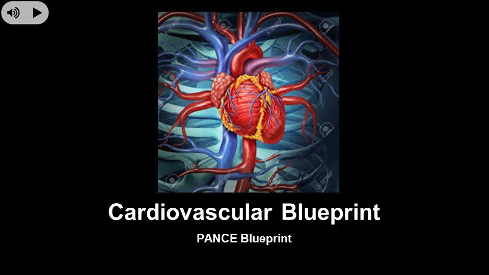 Cardiovascular blueprint pance blueprint dilated cardiomyopathy 1 cardiovascular blueprint pance blueprint malvernweather Choice Image