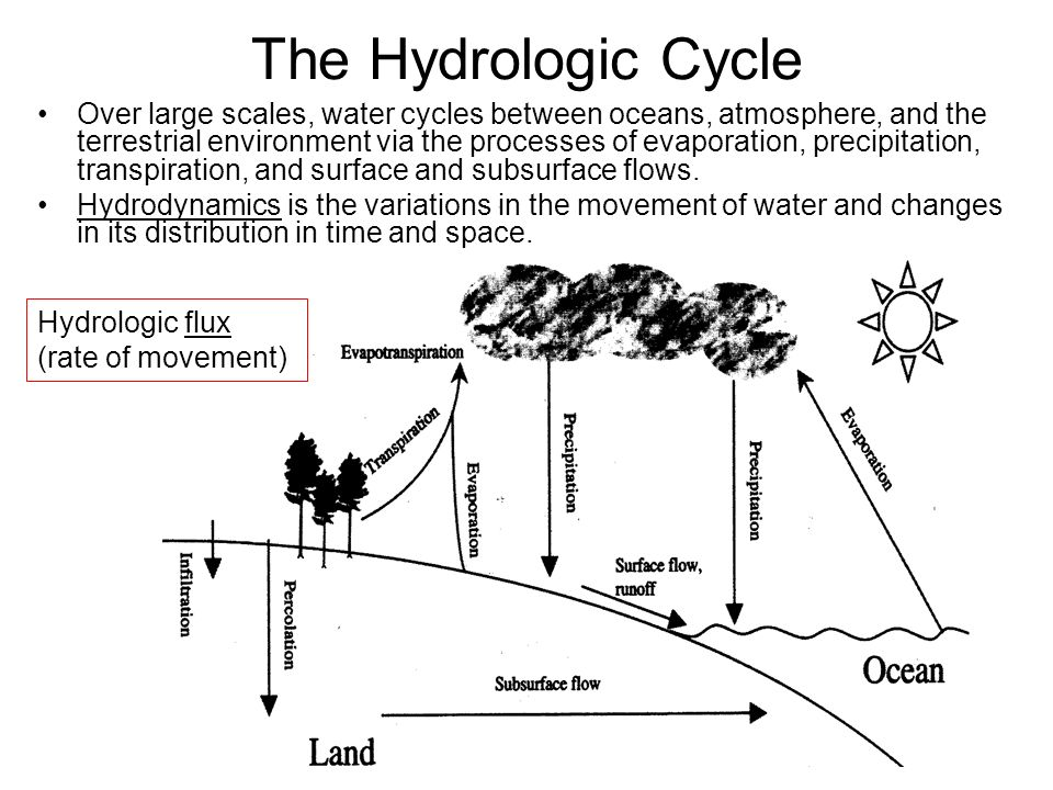 Ecology of Lakes and Streams BIOL 435 Course Introduction What – Hydrologic Cycle Worksheet