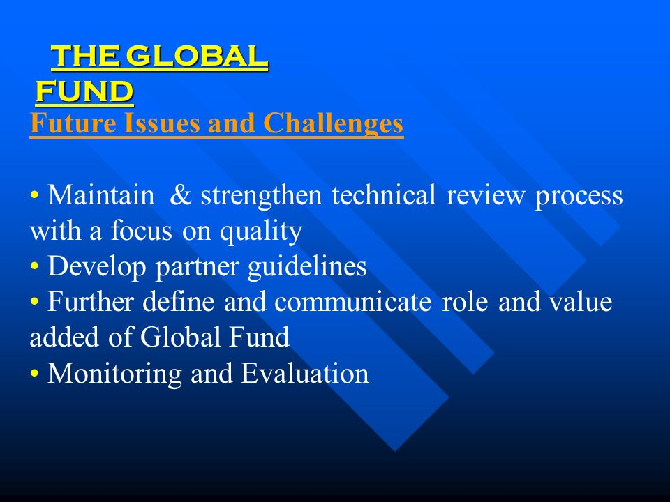 THE GLOBAL FUND Future Issues and Challenges Maintain & strengthen technical review process with a focus on quality Develop partner guidelines Further define and communicate role and value added of Global Fund Monitoring and Evaluation
