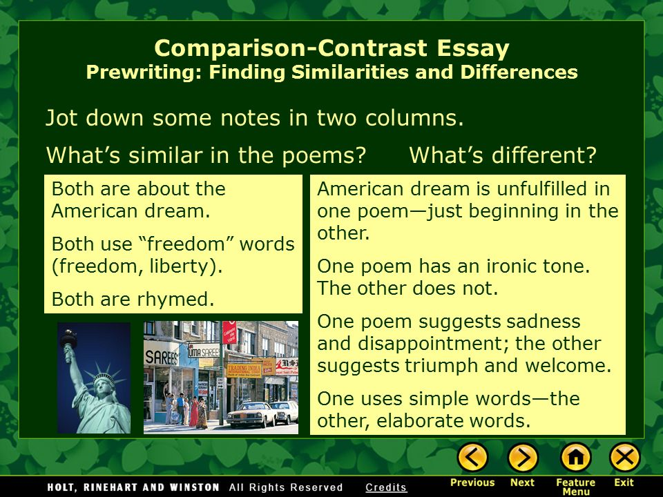 comparison similarities essay Writing a compare and contrast essay: the goal of the compare-&-contrast essay is to examine whether the students can find the differences and similarities.