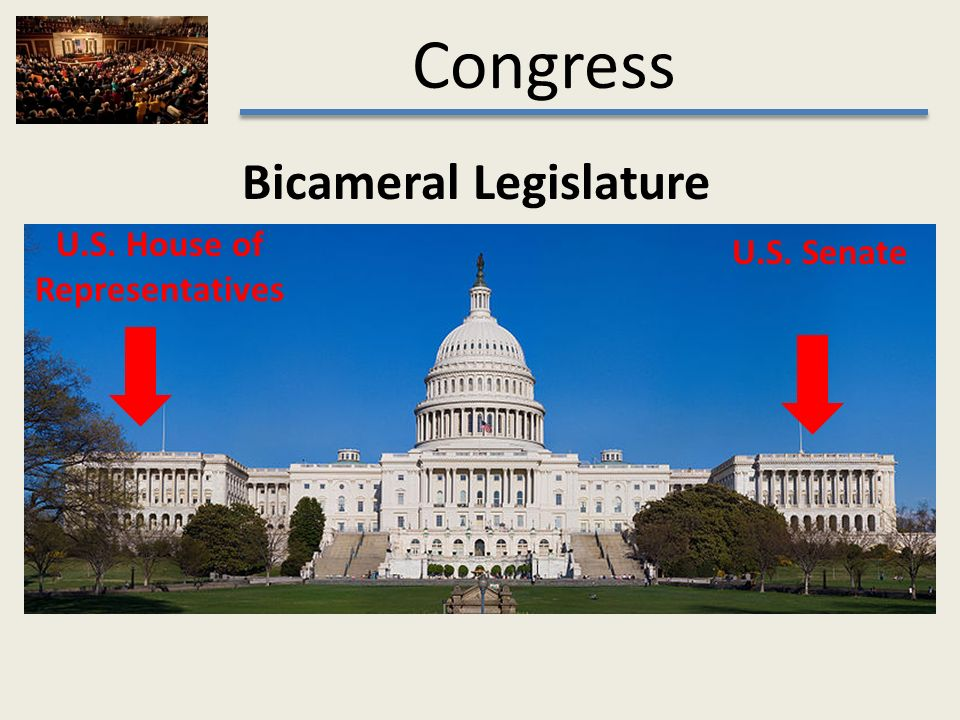 what does congress do A summary of the legislative process in 's congress learn exactly what happened in this chapter, scene, or section of congress and what it means perfect for acing essays, tests, and quizzes, as well as for writing lesson plans.