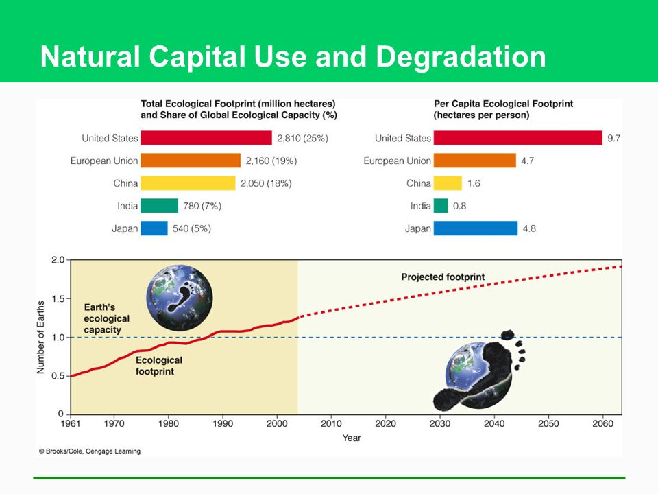 Natural Capital Use and Degradation