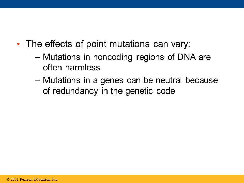 The effects of point mutations can vary: –Mutations in noncoding regions of DNA are often harmless –Mutations in a genes can be neutral because of redundancy in the genetic code © 2011 Pearson Education, Inc.