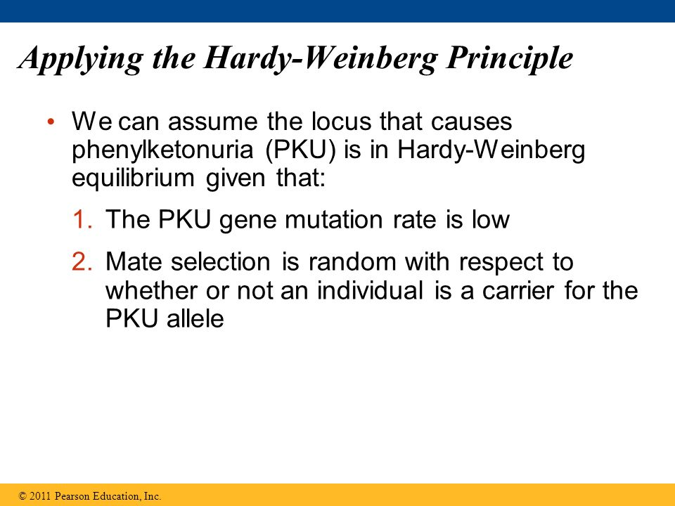 Applying the Hardy-Weinberg Principle We can assume the locus that causes phenylketonuria (PKU) is in Hardy-Weinberg equilibrium given that: © 2011 Pearson Education, Inc.