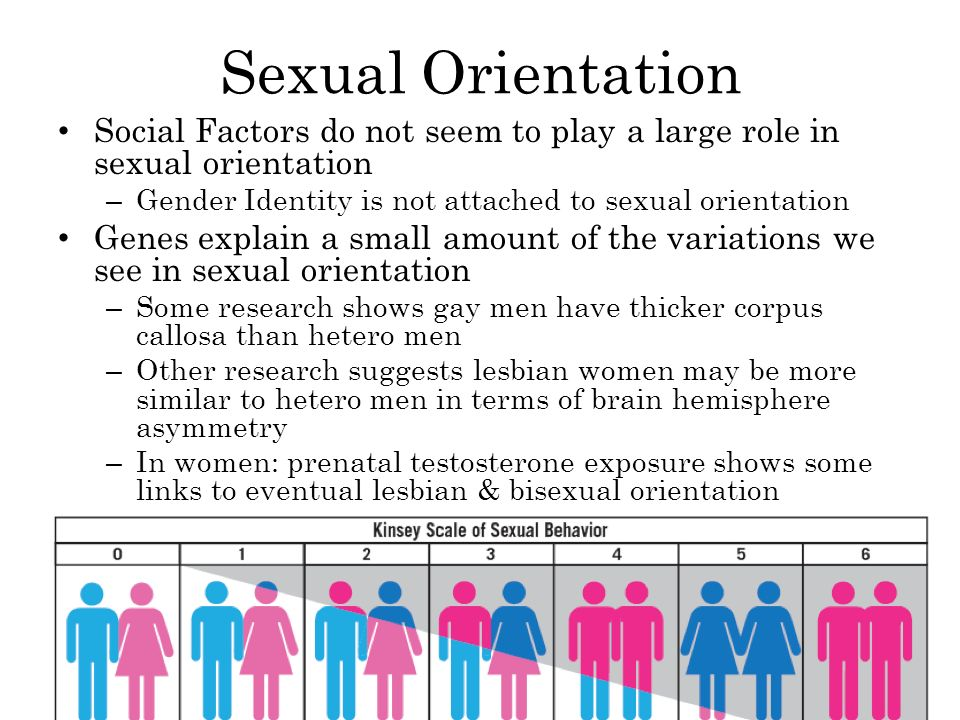 Sexual Orientation Social Factors do not seem to play a large role in sexual orientation – Gender Identity is not attached to sexual orientation Genes