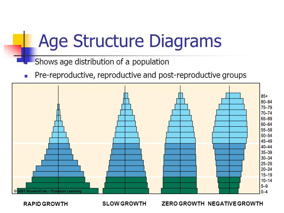 human populations and demographics age structure diagrams shows  : age structure diagram - findchart.co
