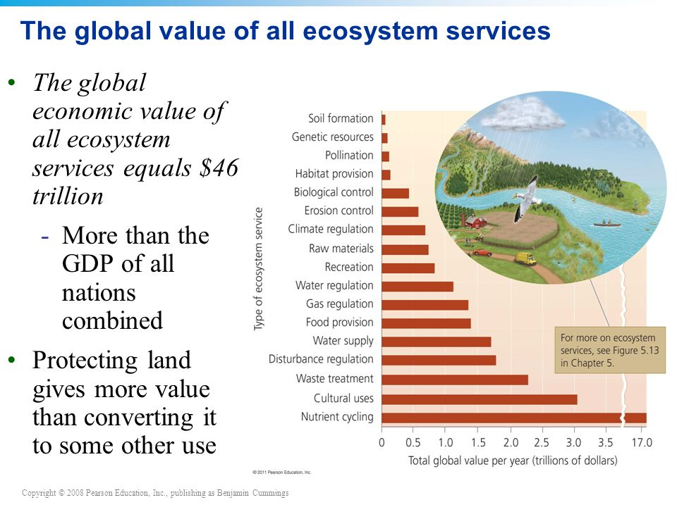 Copyright © 2008 Pearson Education, Inc., publishing as Benjamin Cummings The global value of all ecosystem services The global economic value of all ecosystem services equals $46 trillion -More than the GDP of all nations combined Protecting land gives more value than converting it to some other use
