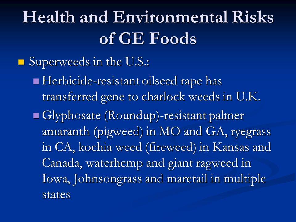 Health and Environmental Risks of GE Foods Superweeds in the U.S.: Superweeds in the U.S.: Herbicide-resistant oilseed rape has transferred gene to charlock weeds in U.K.