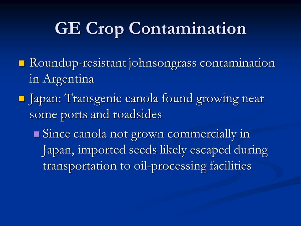 GE Crop Contamination Roundup-resistant johnsongrass contamination in Argentina Roundup-resistant johnsongrass contamination in Argentina Japan: Transgenic canola found growing near some ports and roadsides Japan: Transgenic canola found growing near some ports and roadsides Since canola not grown commercially in Japan, imported seeds likely escaped during transportation to oil-processing facilities Since canola not grown commercially in Japan, imported seeds likely escaped during transportation to oil-processing facilities