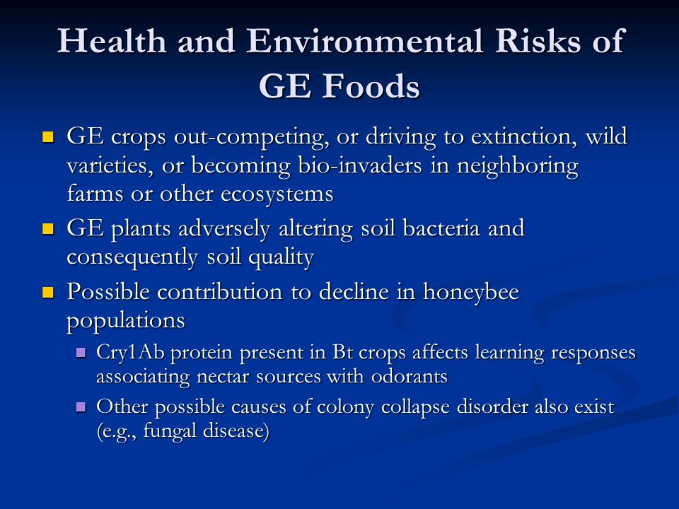 Health and Environmental Risks of GE Foods GE crops out-competing, or driving to extinction, wild varieties, or becoming bio-invaders in neighboring farms or other ecosystems GE crops out-competing, or driving to extinction, wild varieties, or becoming bio-invaders in neighboring farms or other ecosystems GE plants adversely altering soil bacteria and consequently soil quality GE plants adversely altering soil bacteria and consequently soil quality Possible contribution to decline in honeybee populations Possible contribution to decline in honeybee populations Cry1Ab protein present in Bt crops affects learning responses associating nectar sources with odorants Cry1Ab protein present in Bt crops affects learning responses associating nectar sources with odorants Other possible causes of colony collapse disorder also exist (e.g., fungal disease) Other possible causes of colony collapse disorder also exist (e.g., fungal disease)