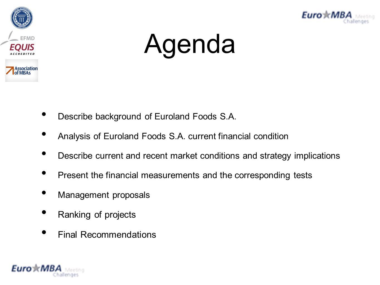 euroland foods s a case analysis