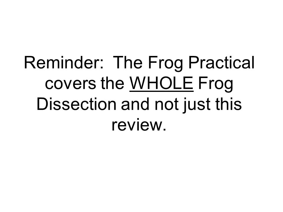 Frog Practical Review Reminder The Frog Practical covers the – Virtual Frog Dissection Worksheet