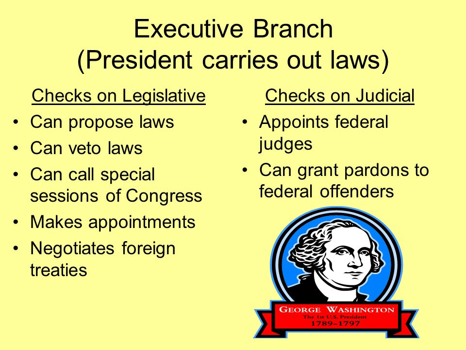 Executive Branch (President carries out laws) Checks on Legislative Can propose laws Can veto laws Can call special sessions of Congress Makes appointments Negotiates foreign treaties Checks on Judicial Appoints federal judges Can grant pardons to federal offenders