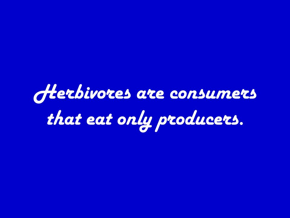 Four types of consumers 1. Herbivores 2. Carnivores 3. Omnivores 4. Decomposers