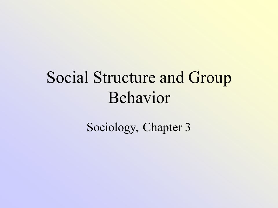 Social Structure Social Structure- the way in which a society is organized into predictable relationships.
