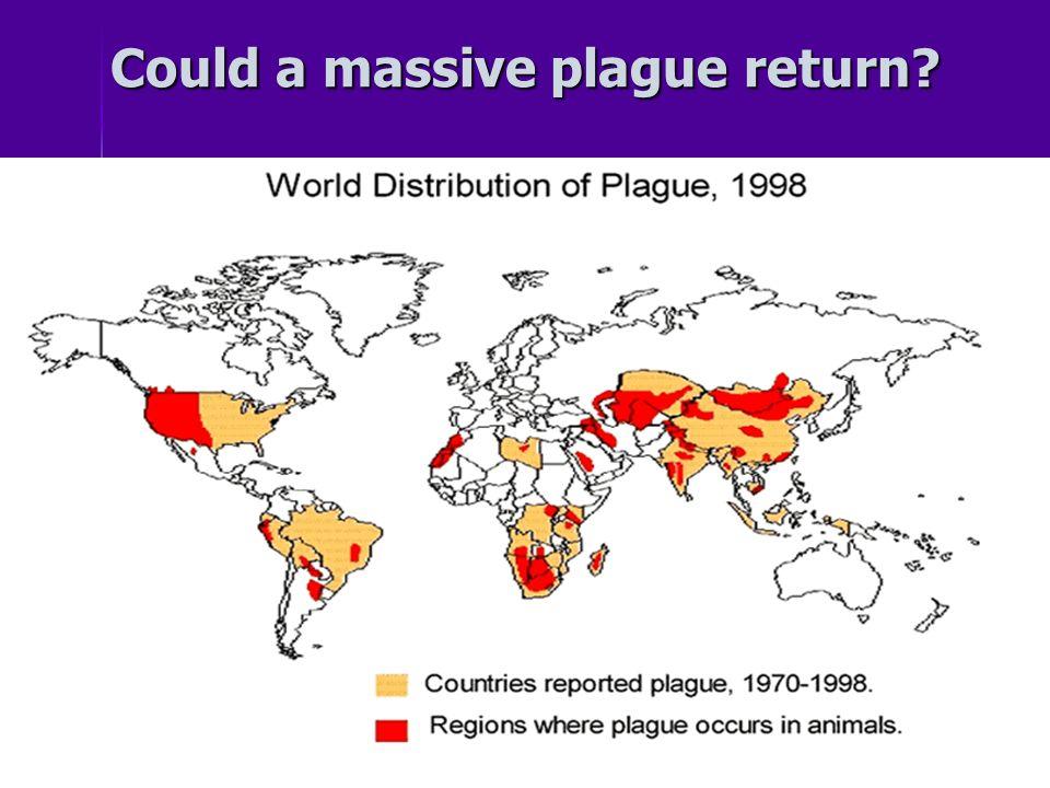 Could a massive plague return