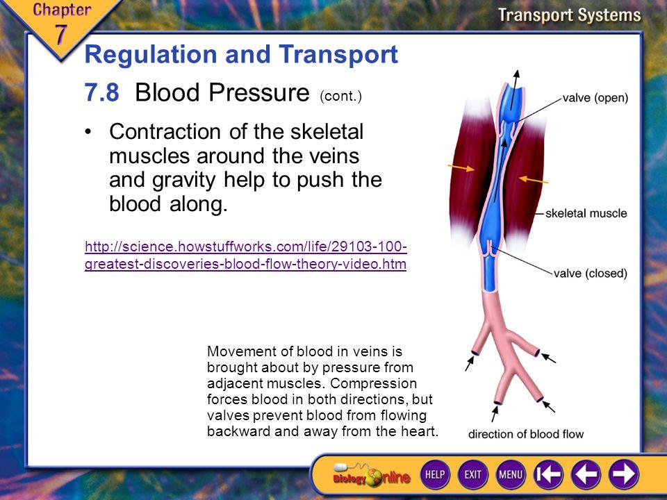 7.8 Blood Pressure 3 Valves in the veins prevent blood under lower pressure from flowing backward.