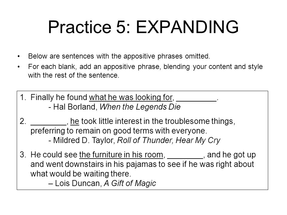 Appositive Phrase Adapted from Grammar for Middle School A – Appositive Phrase Worksheet