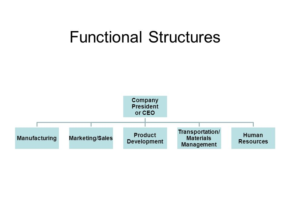 Functional Structures Company President or CEO ManufacturingMarketing/Sales Product Development Transportation/ Materials Management Human Resources