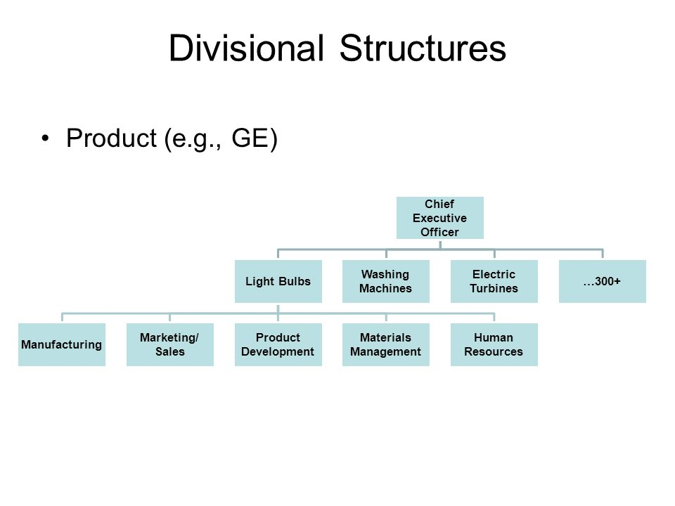 Divisional Structures Product (e.g., GE) Chief Executive Officer Light Bulbs Manufacturing Marketing/ Sales Product Development Materials Management Human Resources Washing Machines Electric Turbines …300+
