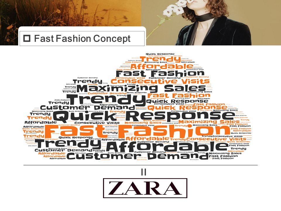 zara business model case study