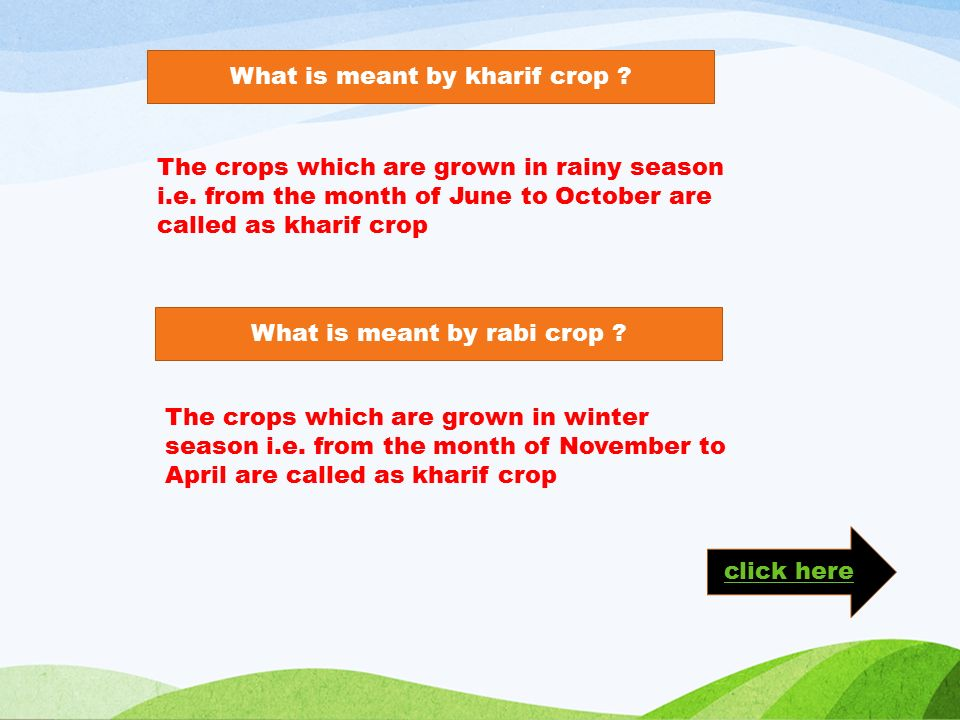 What is meant by kharif crop . The crops which are grown in rainy season i.e.