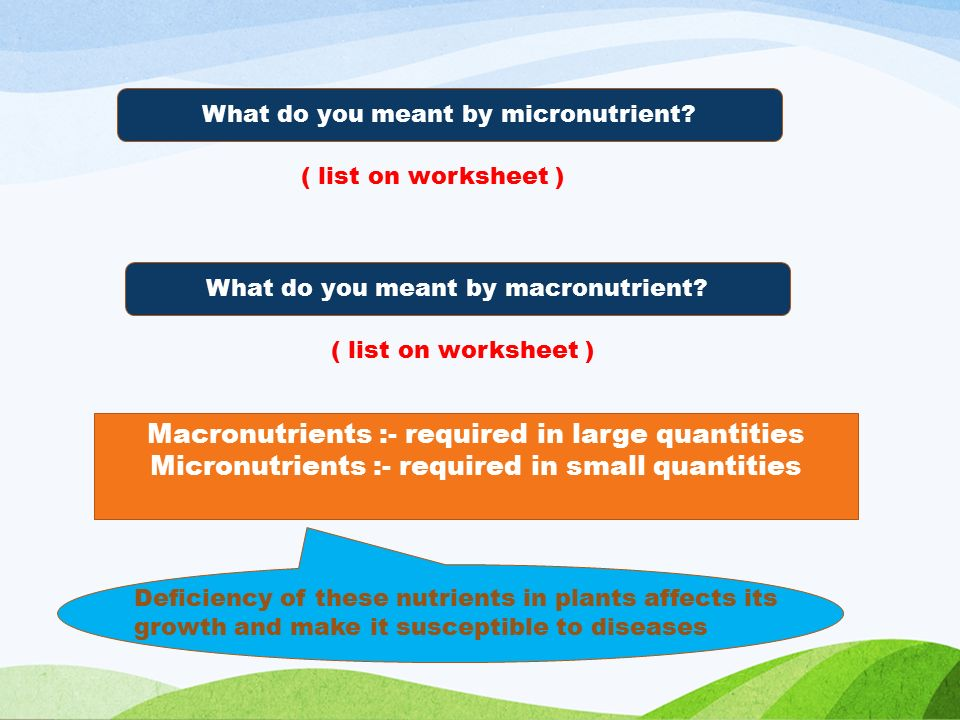 What do you meant by micronutrient. What do you meant by macronutrient.