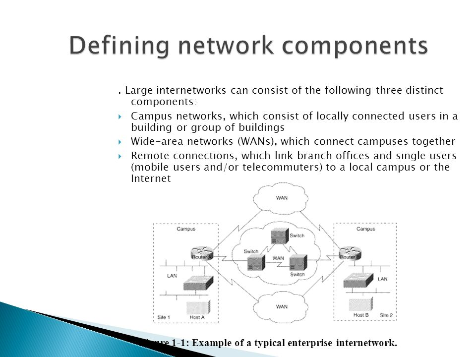 . Large internetworks can consist of the following three distinct components:  Campus networks, which consist of locally connected users in a building or group of buildings  Wide-area networks (WANs), which connect campuses together  Remote connections, which link branch offices and single users (mobile users and/or telecommuters) to a local campus or the Internet Figure 1-1: Example of a typical enterprise internetwork.