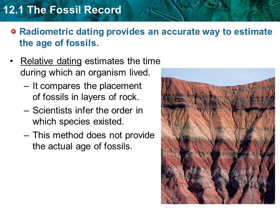 Is dating fossils accurate, messy momma porn gif