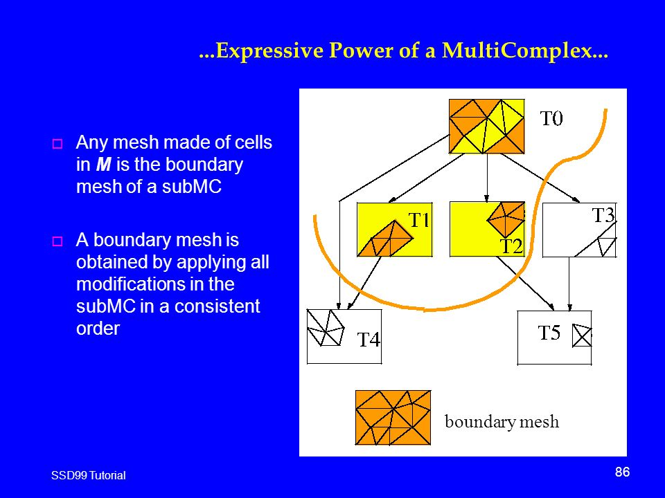 86 SSD99 Tutorial...Expressive Power of a MultiComplex...