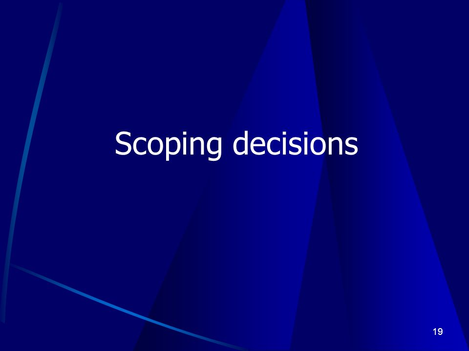 19 Scoping decisions