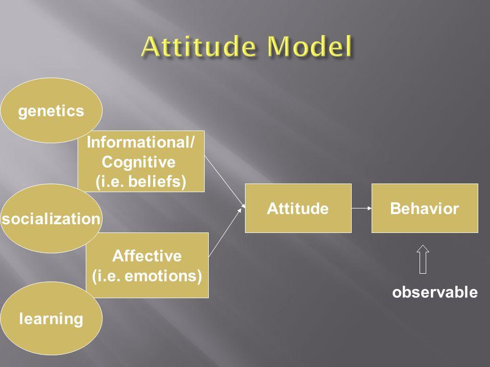 Informational/ Cognitive (i.e. beliefs) Affective (i.e.