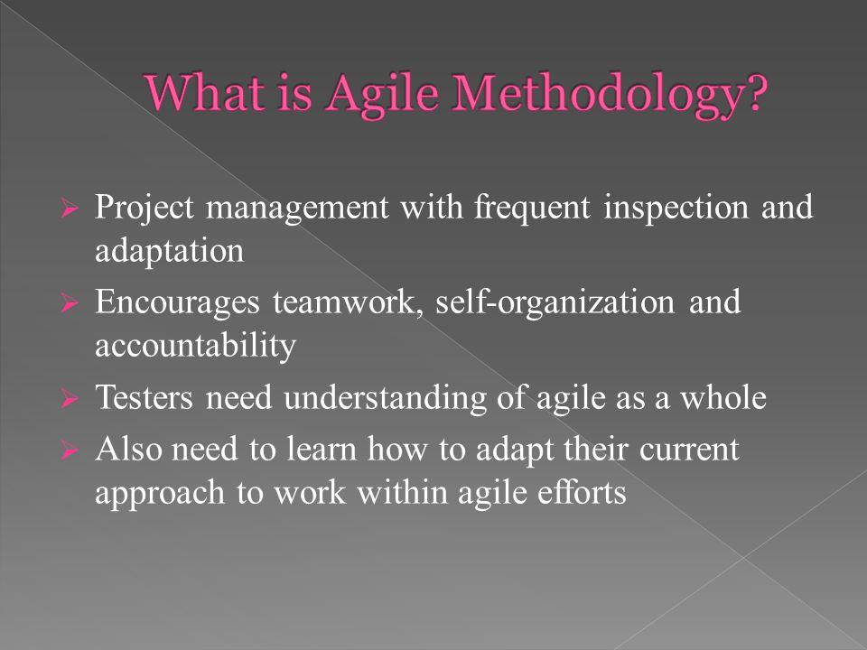3 water fall model iterative model agile methodology scrum frame work xp extreme programming adaptive software development asd - What Is Agile Methodology Pdf