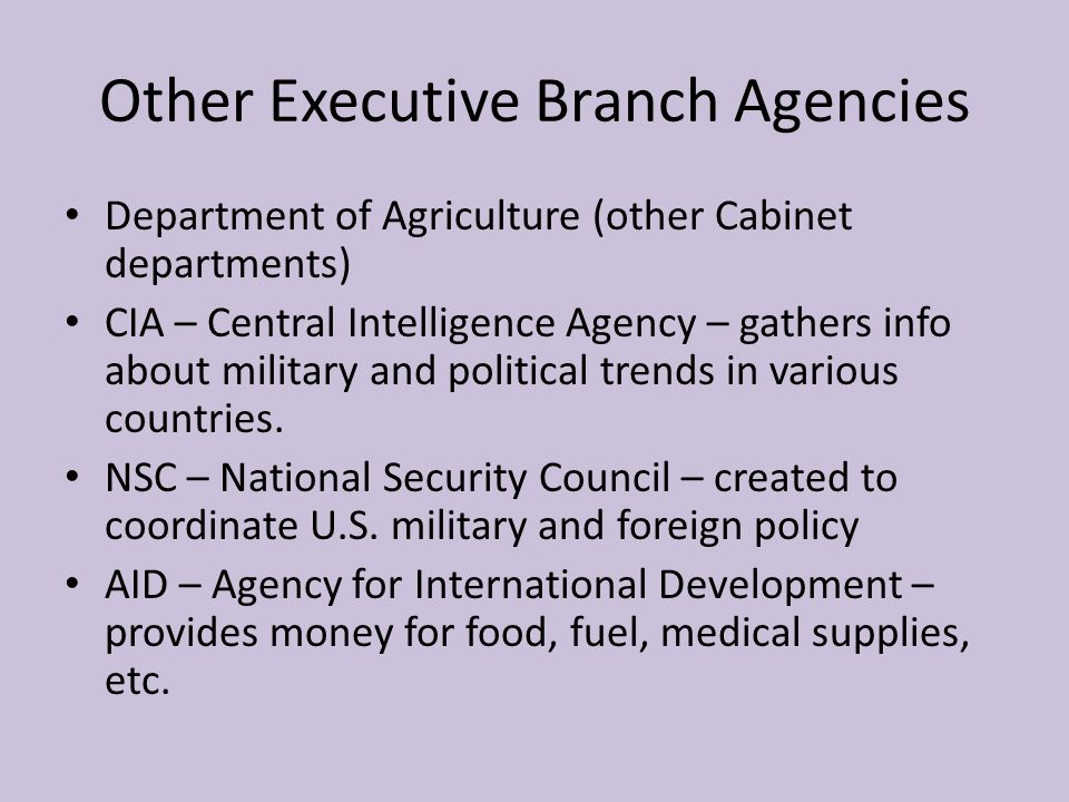 Other Executive Branch Agencies Department of Agriculture (other Cabinet departments) CIA – Central Intelligence Agency – gathers info about military and political trends in various countries.